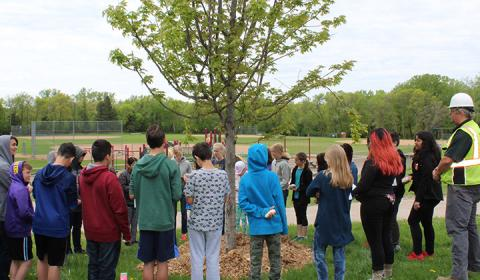 Students planted a tree at Little Canada Elementary.